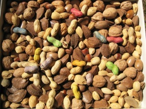 Mixed nuts_ out of the shell_colored nuts